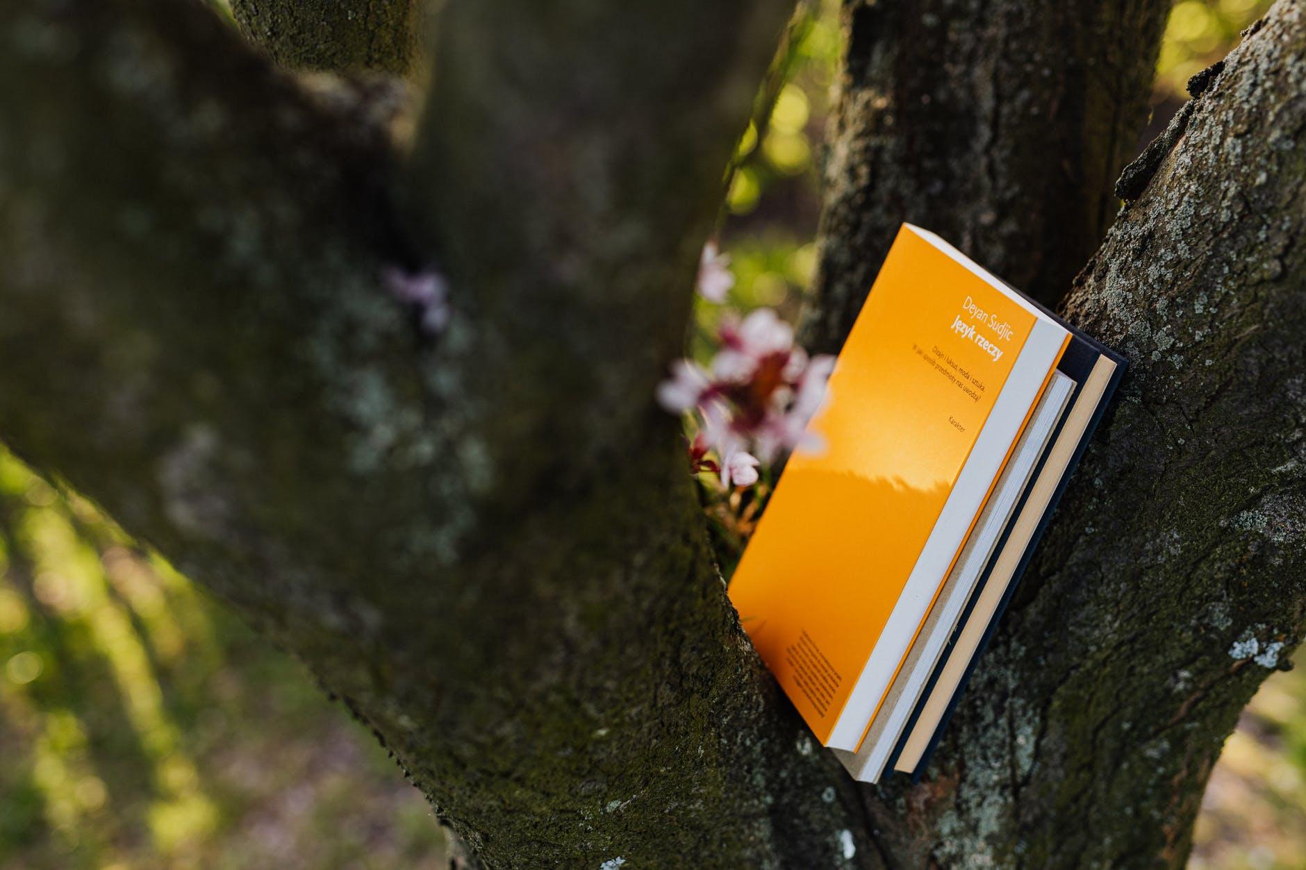 How To Create A Book For Sky Garden